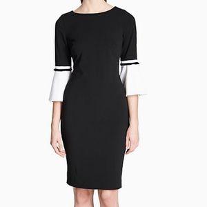 Calvin Klein Colorblock Bell Sleeve Dress